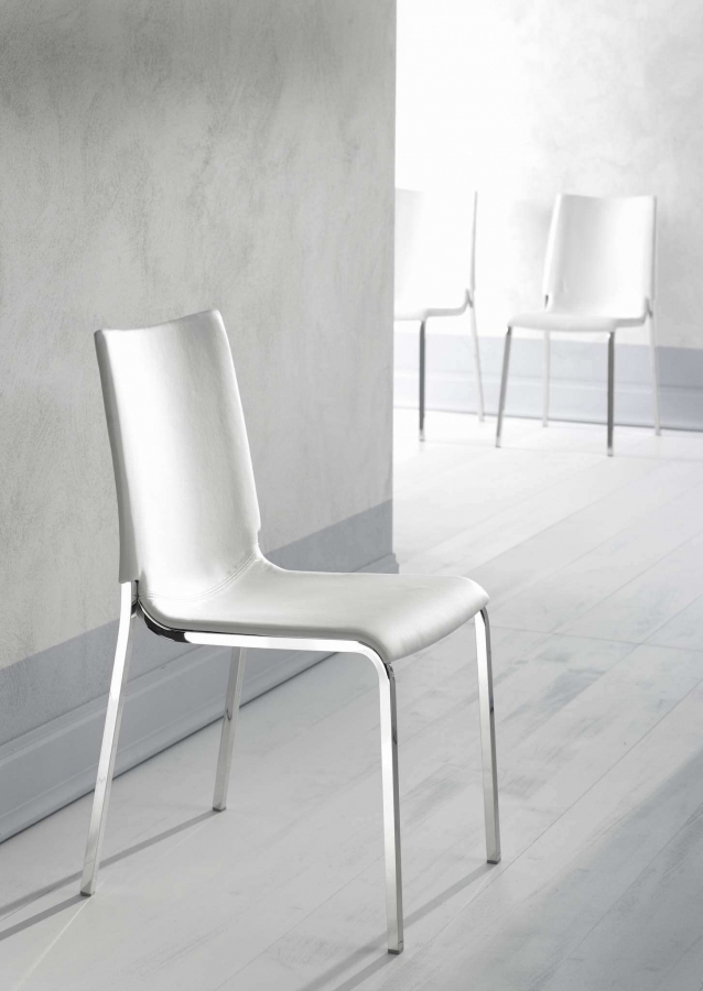 Eva Bontempi - Chair