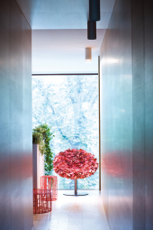 Bouquet Moroso