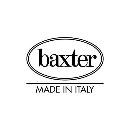 logo - Baxter