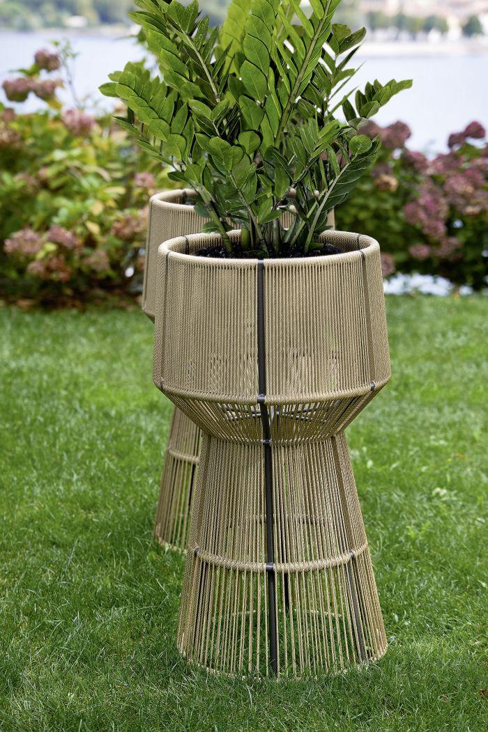 Cricket Varaschin Vase